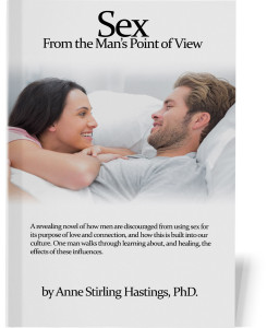 Sex-From-a-Man's-Point-of-View---Book-Cover---front-straight